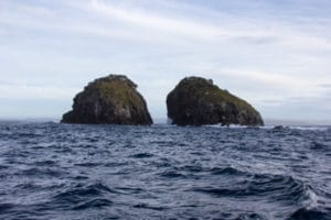 The Haystacks, Sails Tours, Stewart Island