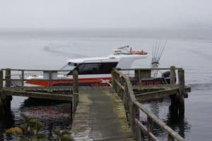Sails Ashore, Port William walk