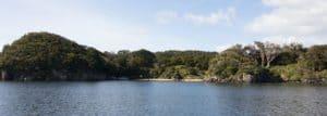 Ulva Island, Sails Ashore, Stewart Island