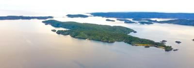 Ulva Island, Sails Tours