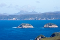 Stewart Island Scenic Flight