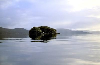 Tami Hau, Stewart Island, Sails Tours