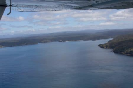 Port Adventure, sails tours, stewart island