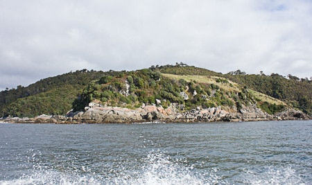 Mamaku Point, Sails Tours, Stewart Island