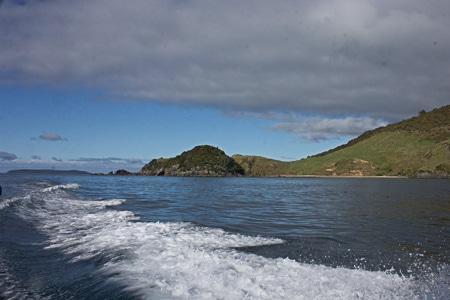 Nathans Island, Sails Tours, Stewart Island