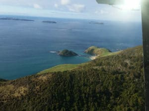 Nathans Island, Mamaku Point, Fish Rock, stewart island