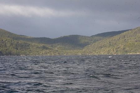 Hapuatuna, Sails Tours, Stewart Island