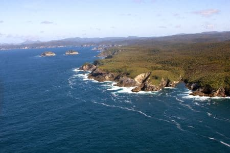 seal point, sails tours, stewart island