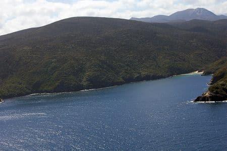 Three Legged Woodhen, Stewart Island Place Names, Sails Tours
