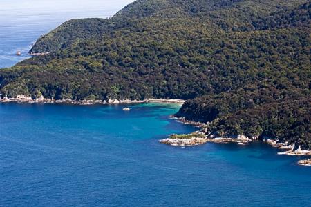 Roderiques, Sails Stewart Island Tours