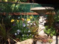 Sprung Spring