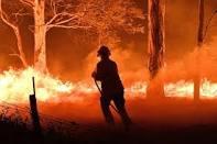 Australian Bushfires 36 times larger than Stewart Island
