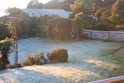 Kiwi Alarm Clock
